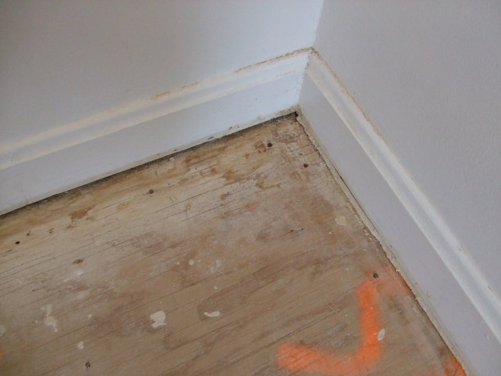 Should I replace my plywood subfloors?-dscf0299.jpg
