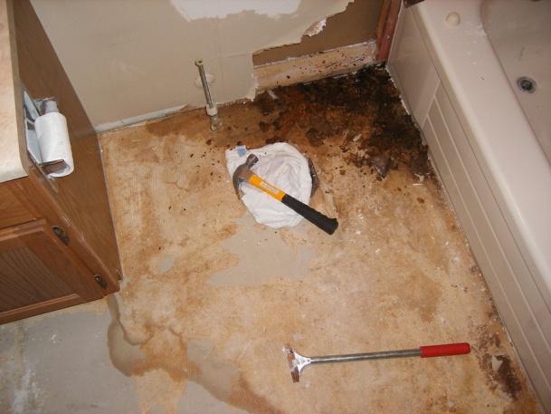 Water seeped through tiles in shower, wall ruined, need help.-dscf0997.jpg