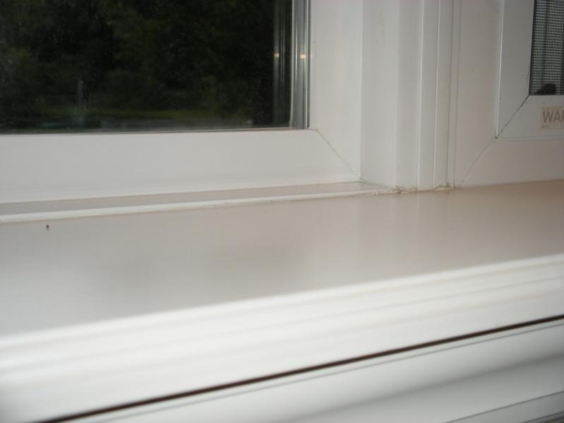 Replacement Window - Nail Fin Question-dscf1848.jpg