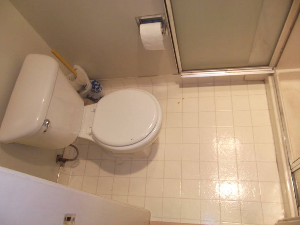 Want to avoid full demo on Small Bathroom - Need Advice-dscf2036.jpg