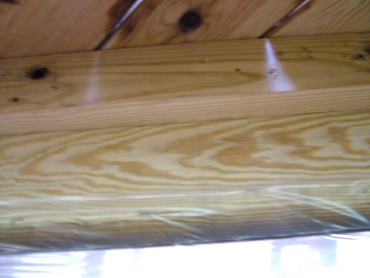 screen porch tile CDX subflooring-dscf2129.jpg