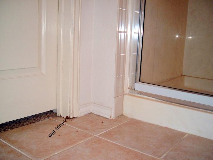 Leaking vent pipe?-dscf2294.jpg