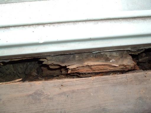 Help! How do I fix rotten wood under door?-dscf2727.jpg