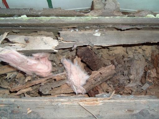 Help! How do I fix rotten wood under door?-dscf2733.jpg