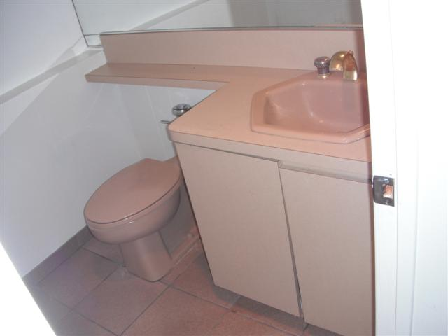 Demo'd Half-Bath, Issues, Pics Attached, Have at it...-dscf6581.jpg