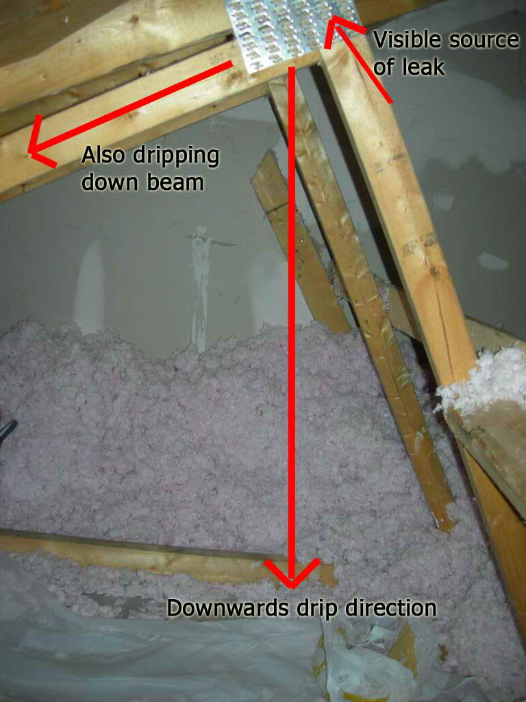 New 1yr Townhome with Leaking Roof!-dscn0020.jpg