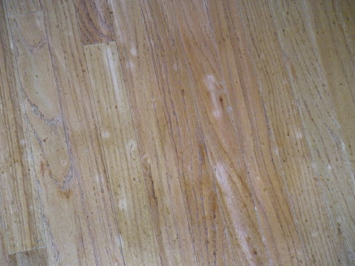 Refinish Hardwood Floors... What's withe the spots?!? (pics attached)-dscn0030.jpg