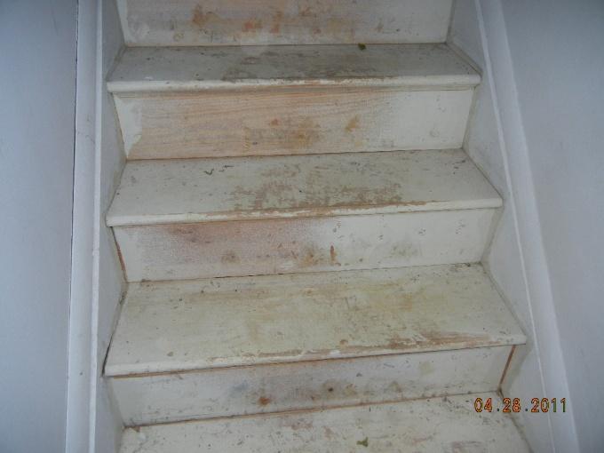 Oh Boy, Stair Help-dscn0248.jpg