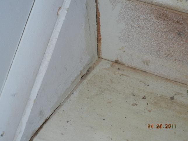 Oh Boy, Stair Help-dscn0249.jpg