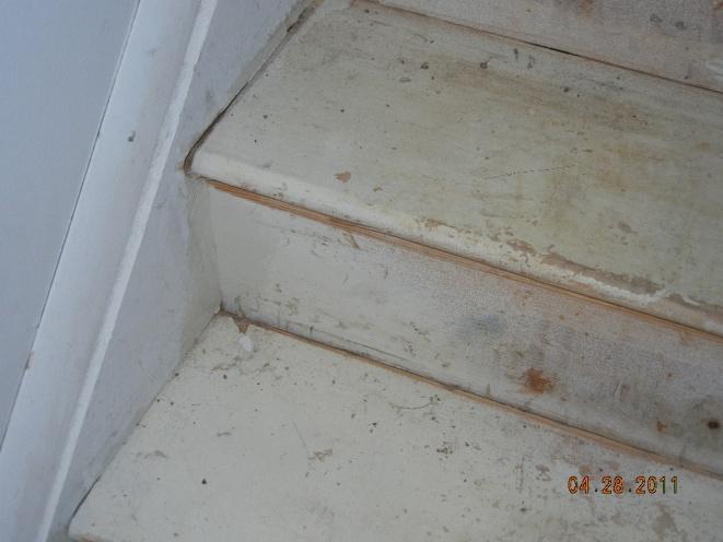 Oh Boy, Stair Help-dscn0250.jpg