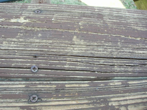 should I replaced the deck?-dscn1132.jpg