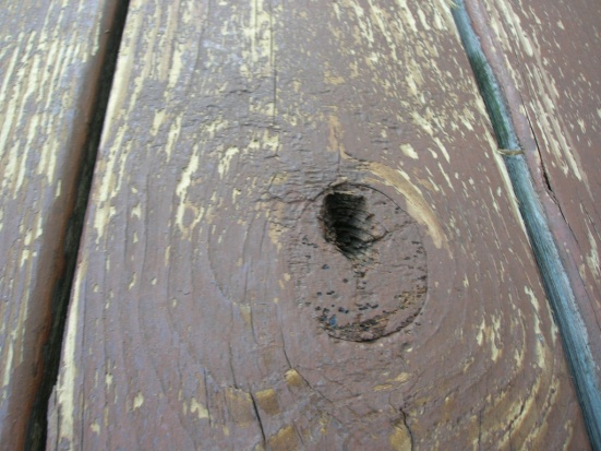 should I replaced the deck?-dscn1134.jpg