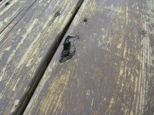 should I replaced the deck?-dscn1135.jpg