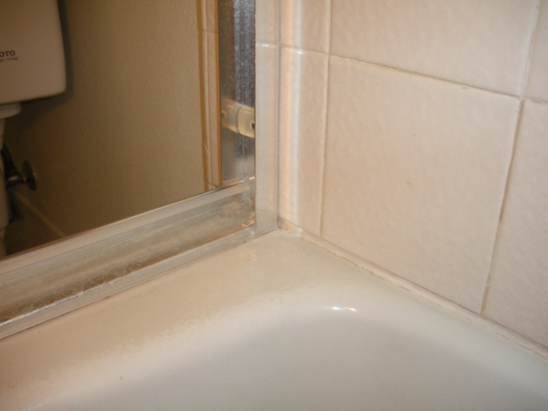 How to seal to existing clear silicone caulk?-dscn1381crop.jpg