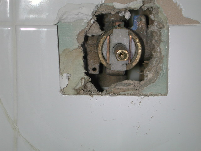 Moen Cartridge Repacement Single Handle Shower Plumbing Diy