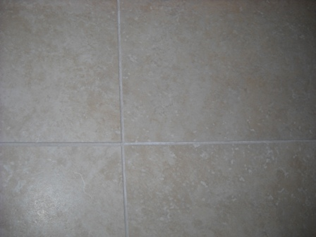 Grout Discolouration-dscn1566.jpg