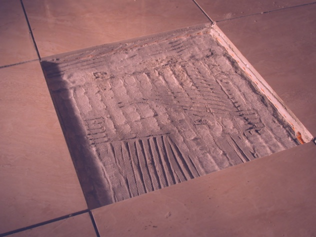 installing tile for easy removal, without damaging subfloor?-dscn1655.jpg