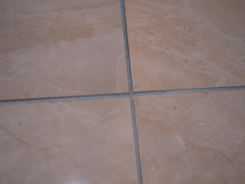 installing tile for easy removal, without damaging subfloor?-dscn1745.jpg