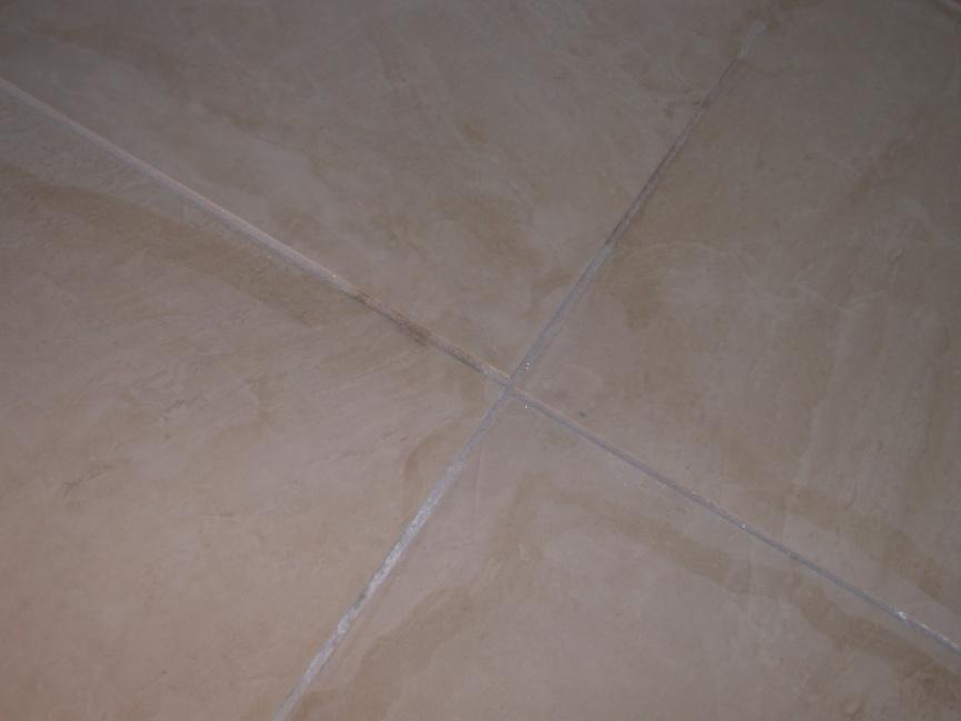 installing tile for easy removal, without damaging subfloor?-dscn1752.jpg