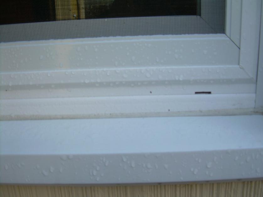 replacement window question-dscn2142.jpg