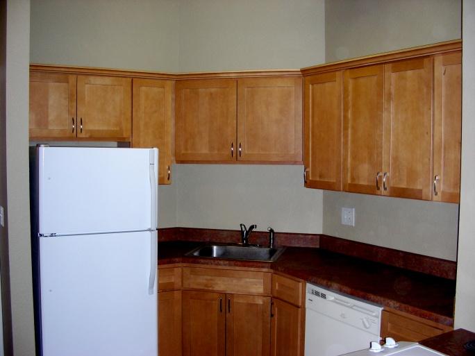 RTA cabinets?-dscn4065.jpg