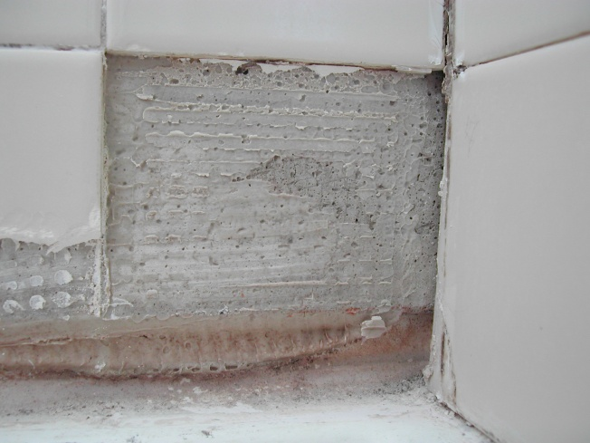 Repairing missing grout in shower stall-dscn5002.jpg