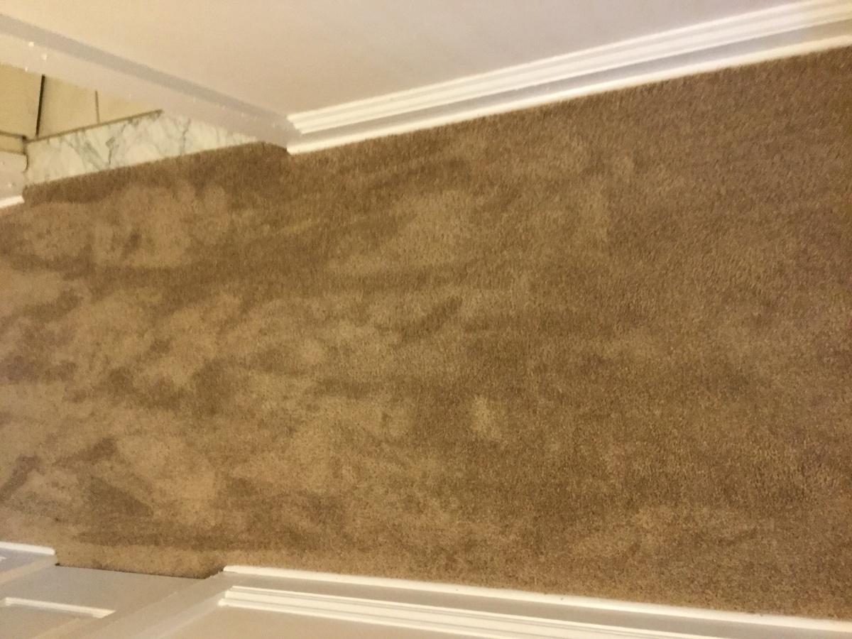 Carpet Installation-ea3d1832-d436-4dd7-8789-58601b69866e.jpg
