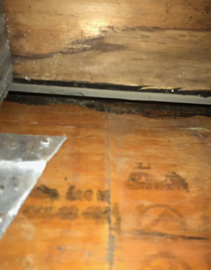 Is This Mold Or Mastic? - Building & Construction - DIY ...