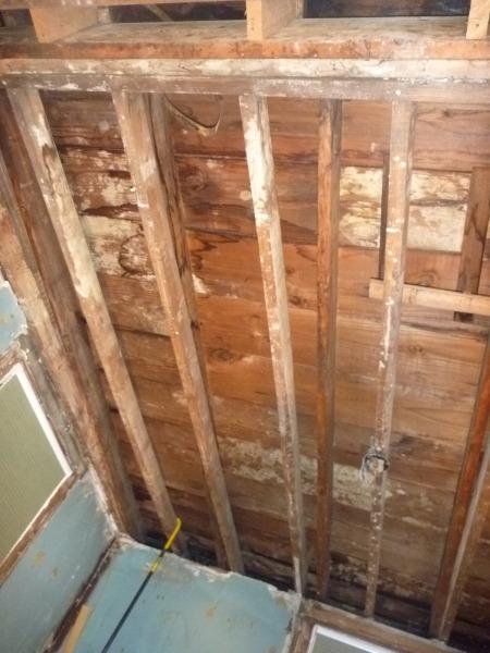 exposed rafter ceiling in extension bedroom-exposed_rafters_2_x.jpg