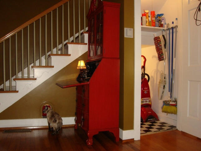 Cold room under stairs (dirt floor) questions with pics-exteriorcatcloset-1280x960-.jpg