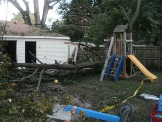 Ordinarily, we don't use the service entrance wire to try to hold up a tree...-fallen-tree-10sep2011.jpg