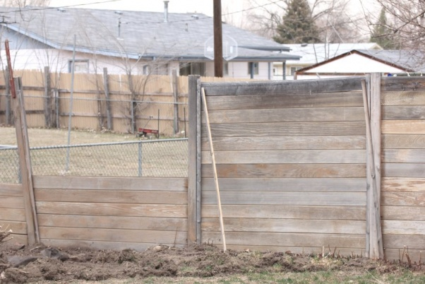 Southwest Staining Co Applying Stain to a Cedar Fence. - YouTube