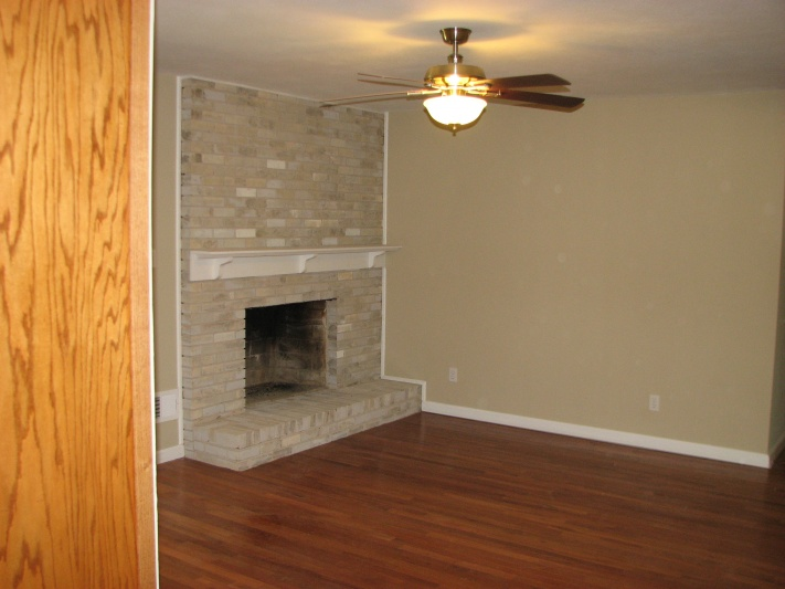 Painting brick?-fireplaceleft.jpg