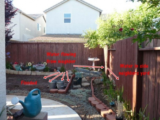 Need help with flooding backyard from neighbor-flood1.jpg