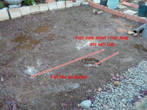 Need Help With Flooding Backyard From Neighbor ...