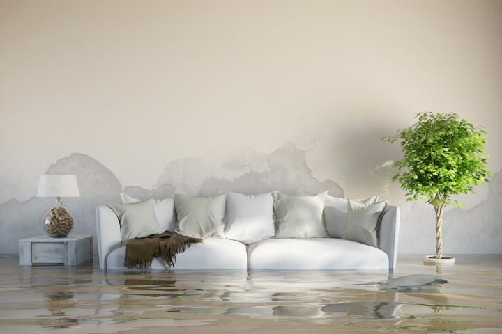 Flood Preparation 101