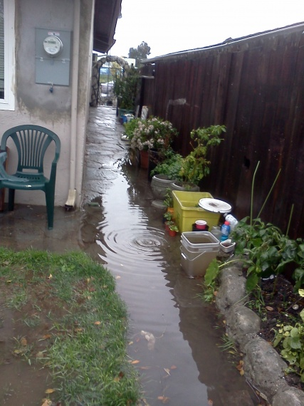 Improper drainage around my home? Suggestions and cost estimates-flooding4.jpg