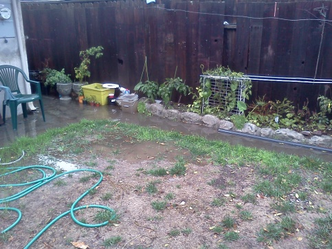 Improper drainage around my home? Suggestions and cost estimates-flooding5.jpg