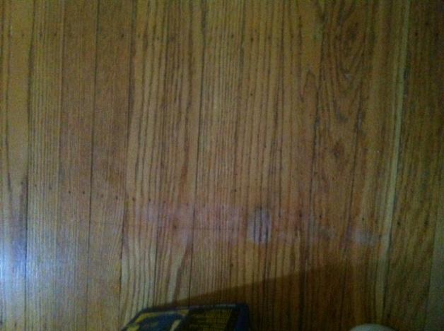 Re-finished hardwood Flooring Issue-floor-1.jpg