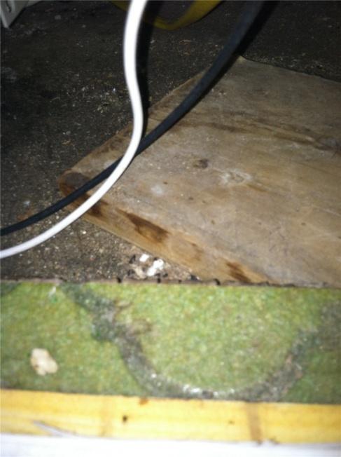 Have this sheet vinyl floor asbestos tested?-floor.jpg