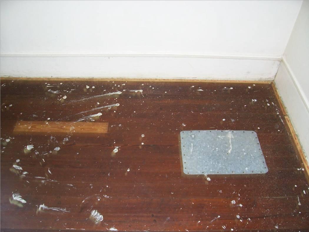 What type of wood is this?-floor1.jpg