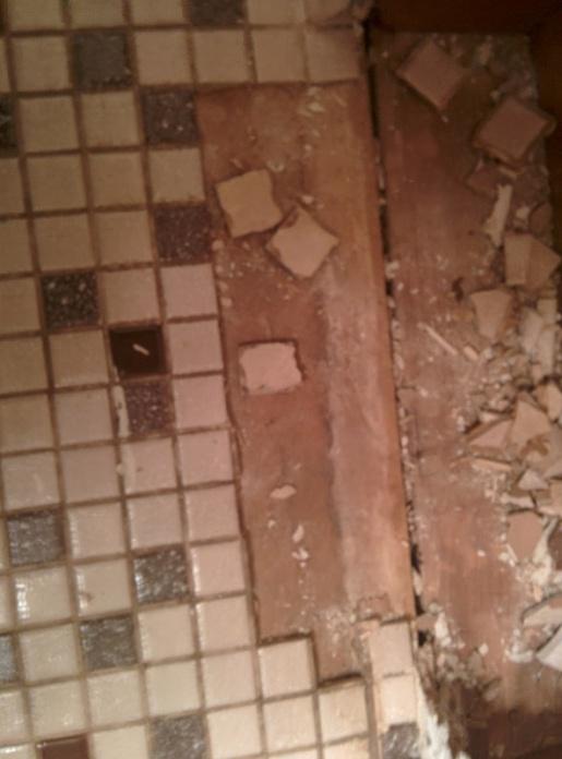 Asbestos Under Bathroom Floor Wood Floors