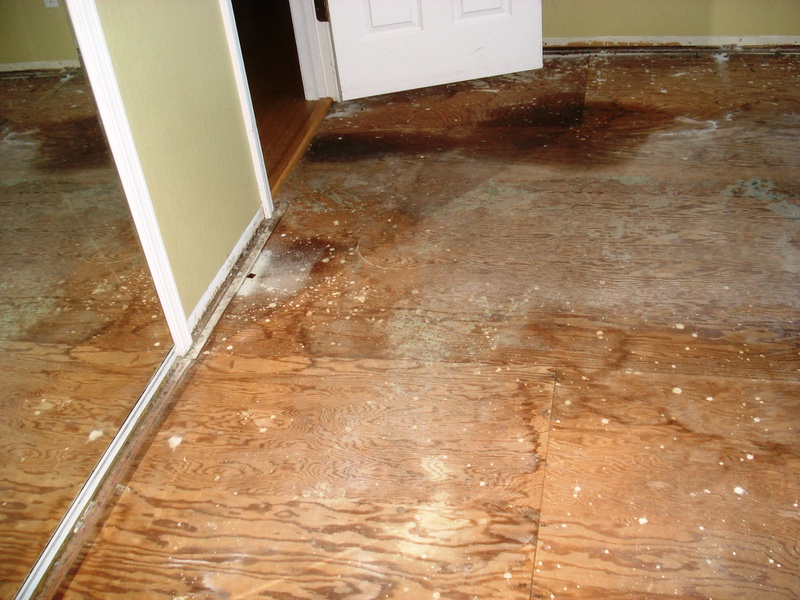 Why does the subfloor have to be flat?-floor3.jpg