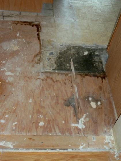 Perfect Home Depot Allure Flooring 420 x 561 · 79 kB · jpeg