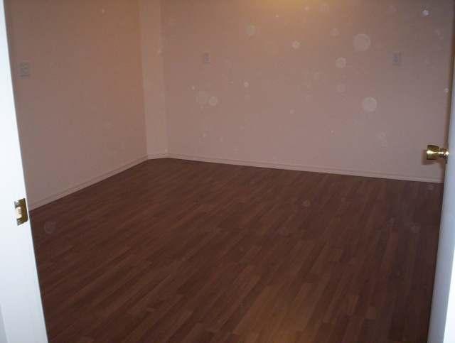 From Carpet to laminent?-flooring.jpg