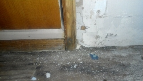 how to fix hole in porch door jamb?-forumrunner_20111023_161317.jpg