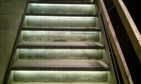 stair step lighting-forumrunner_20120807_114032.jpg