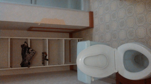 Rediculous Place for a Toilet..Help..-forumrunner_20121101_223713.jpg