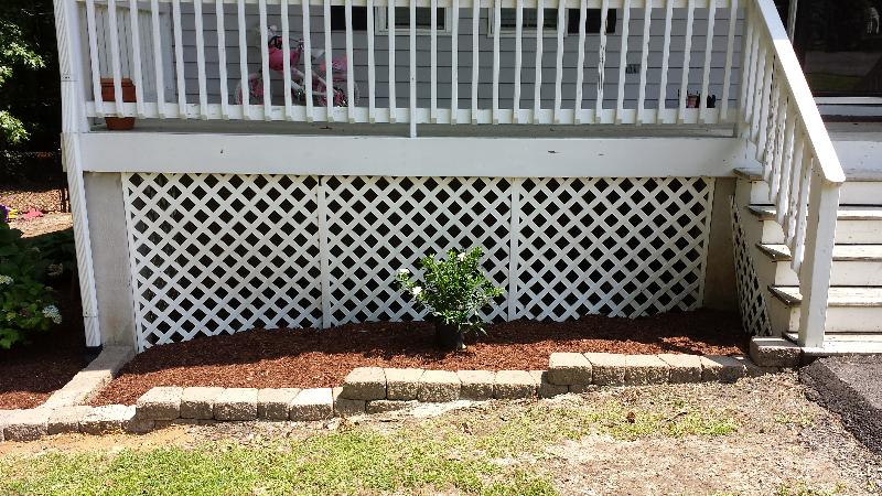 Bush ideas for flower beds-forumrunner_20150608_155743.png
