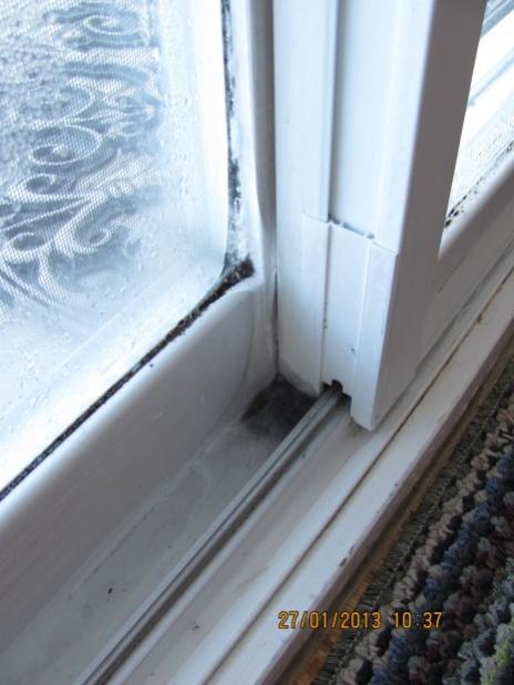 Ice inside my windows-french-window.jpg